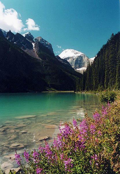 بحيرة لويز الطبيعة الخضراء في كندا
